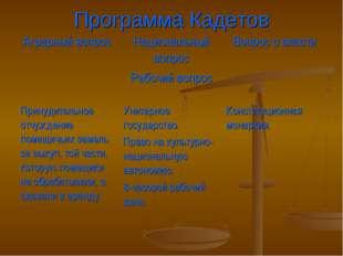 Программа Кадетов