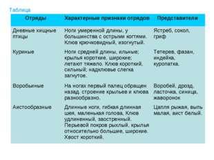 Таблица Отряды Характерные признаки отрядов Представители Дневные хищные пт