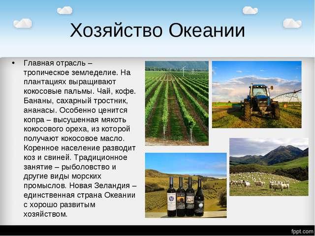 Хозяйство Океании Главная отрасль – тропическое земледелие. На плантациях выр...