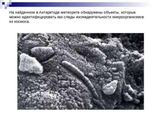На найденном в Антарктиде метеорите обнаружены объекты, которые можно идентиф