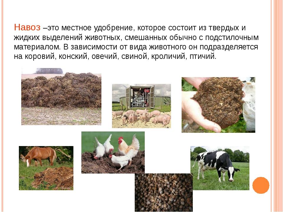 Навоз –это местное удобрение, которое состоит из твердых и жидких выделений ж...