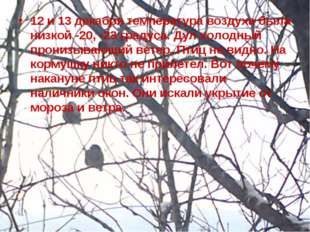 12 и 13 декабря температура воздуха была низкой -20, -23 градуса. Дул холодны