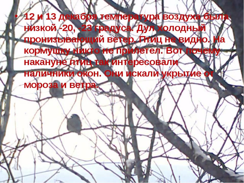 12 и 13 декабря температура воздуха была низкой -20, -23 градуса. Дул холодны...