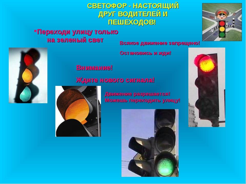 Переходи улицу только на зеленый свет СВЕТОФОР - НАСТОЯЩИЙ ДРУГ ВОДИТЕЛЕЙ И П...