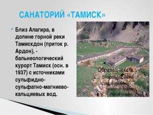 Близ Алагира, в долине горной реки Тамискдон (приток р. Ардон), - бальнеологи