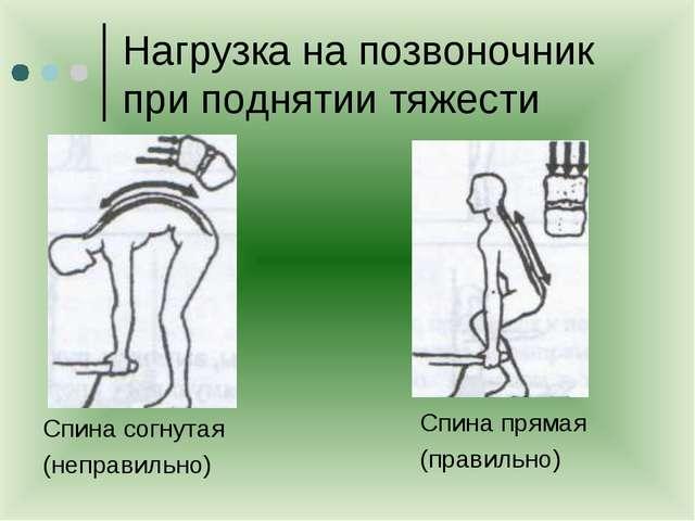 Нагрузка на позвоночник при поднятии тяжести Спина согнутая (неправильно) Спи...