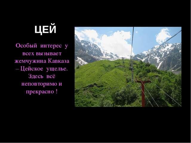ЦЕЙ Особый интерес у всех вызывает жемчужина Кавказа – Цейское ущелье. Здесь...