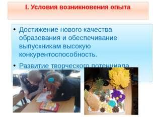 I. Условия возникновения опыта Достижение нового качества образования и обесп