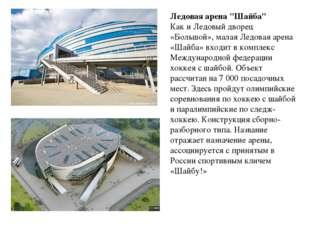 """Ледовая арена """"Шайба"""" Как и Ледовый дворец «Большой», малая Ледовая арена «Ша"""