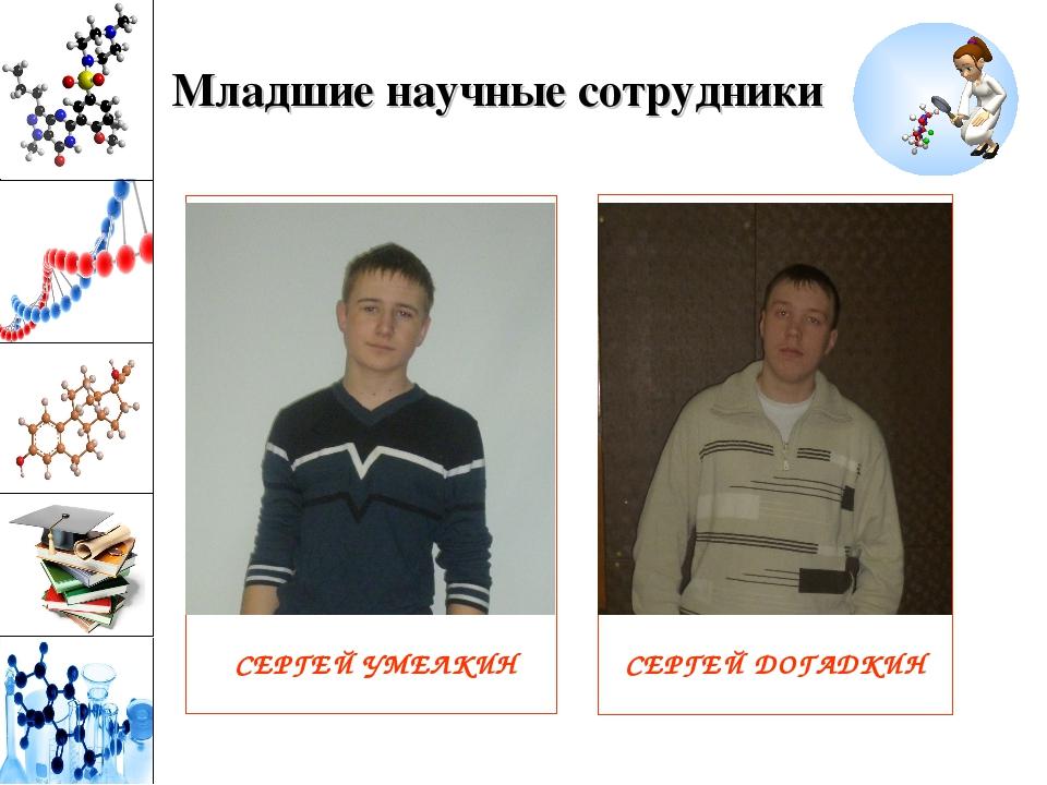 Младшие научные сотрудники СЕРГЕЙ УМЕЛКИН СЕРГЕЙ ДОГАДКИН