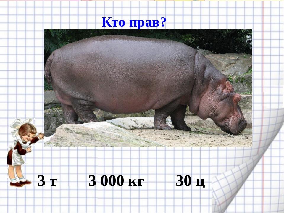 Кто прав? Колибри 3 т 3 000 кг 30 ц