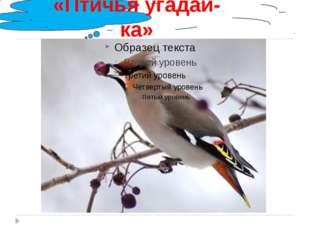 «Птичья угадай-ка»