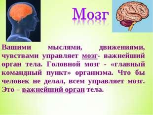 Вашими мыслями, движениями, чувствами управляет мозг- важнейший орган тела. Г