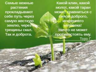 Самые нежные растения прокладывают себе путь через самую жесткую землю, через