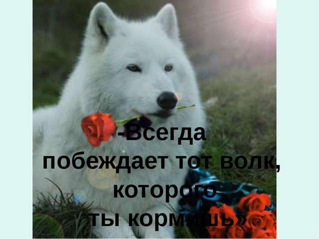 -Всегда побеждает тот волк, которого ты кормишь»