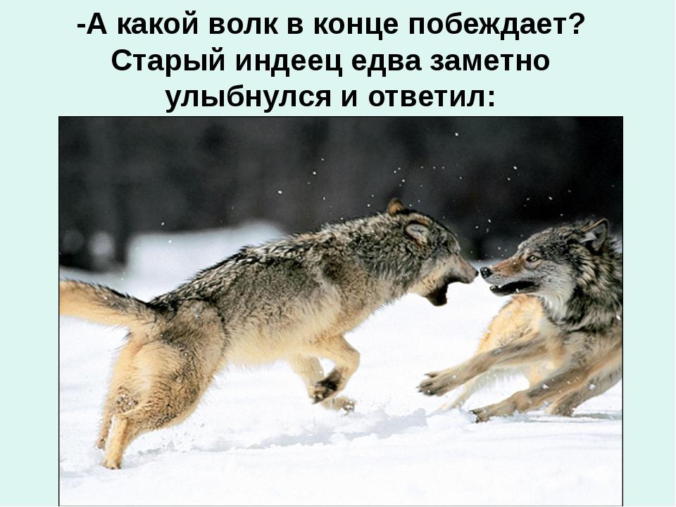 -А какой волк в конце побеждает? Старый индеец едва заметно улыбнулся и ответ...