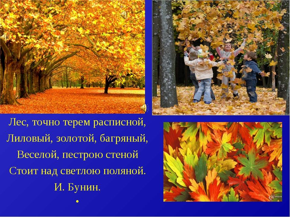 Лес,точнотеремрасписной, Лиловый,золотой,багряный, Веселой, пестрою стен...