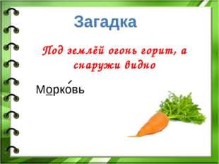 Под землёй огонь горит, а снаружи видно Загадка Морковь