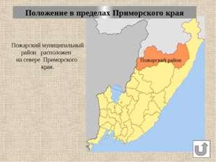 Общая протяженность границ Пожарского района – 1255км, из них по российско-ки
