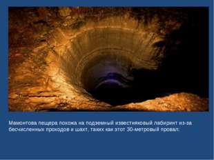 Мамонтова пещера похожа на подземный известняковый лабиринт из-за бесчисленны