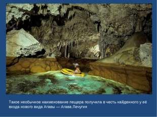 Такое необычное наименование пещера получила в честь найденного у её входа но