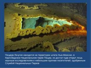 Пещера Лечугия находится на территории штата Нью-Мексико, в Карлсбадском Наци
