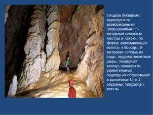 """Пещера буквально переполнена всевозможными """"украшениями"""": 6-метровые гипсовые"""