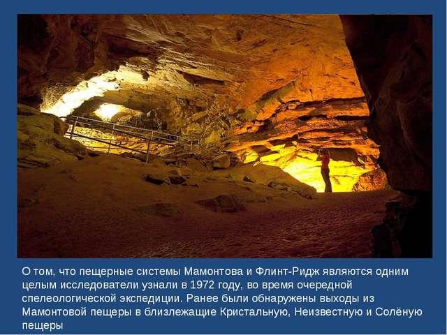 О том, что пещерные системы Мамонтова и Флинт-Ридж являются одним целым иссле...