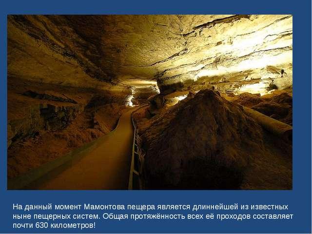 На данный момент Мамонтова пещера является длиннейшей из известных ныне пещер...