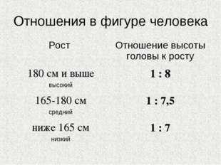 Отношения в фигуре человека Рост Отношение высоты головы к росту 180 см и вы