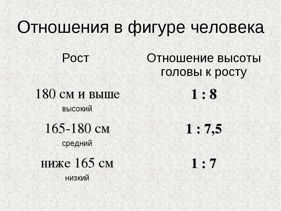 Отношения в фигуре человека Рост Отношение высоты головы к росту 180 см и вы...