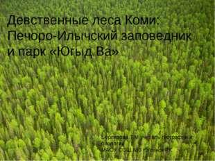 Девственные леса Коми: Печоро-Илычский заповедник и парк «Югыд Ва» Берлизова