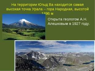 На территории Югыд Ва находится самая высокая точка Урала – гора Народная, вы