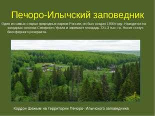 Печоро-Илычский заповедник Один из самых старых природных парков России, он б