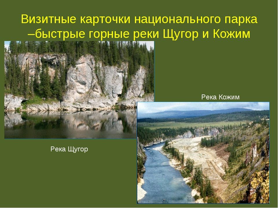 Визитные карточки национального парка –быстрые горные реки Щугор и Кожим Река...