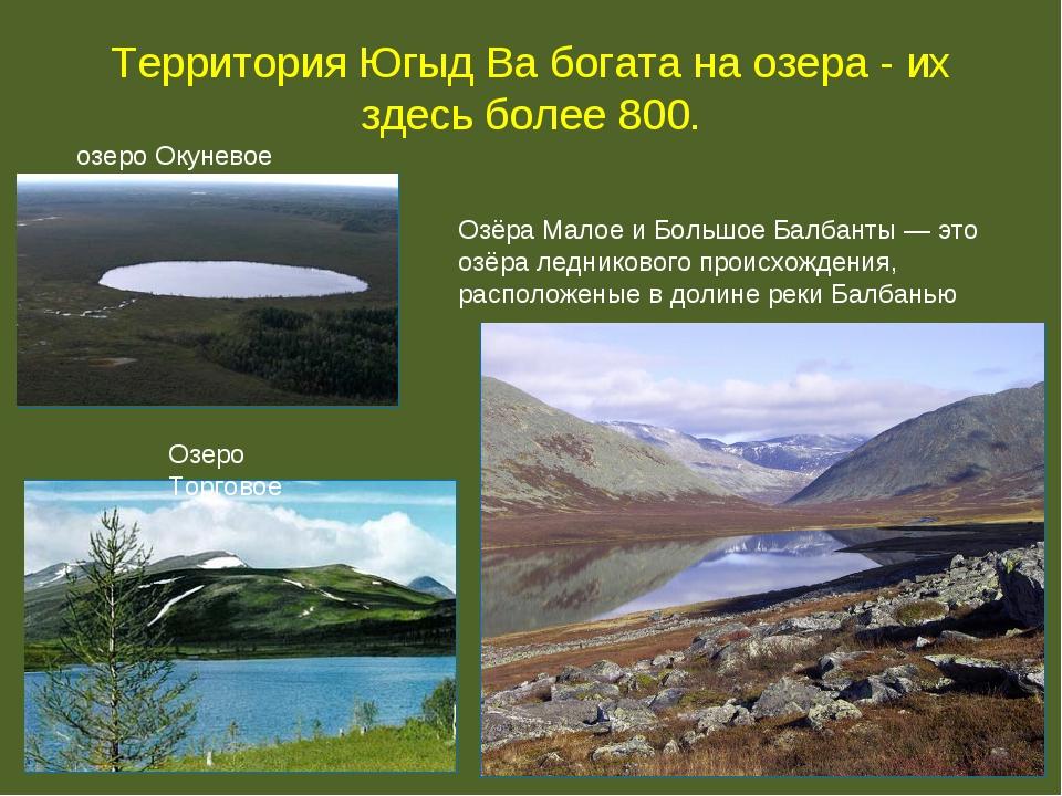 Территория Югыд Ва богата на озера - их здесь более 800. озеро Окуневое Озёра...
