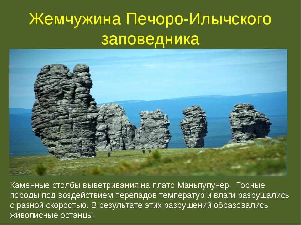 Жемчужина Печоро-Илычского заповедника Каменные столбы выветривания на плато...