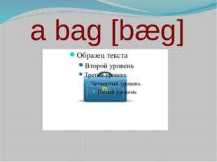a bag [bæg]