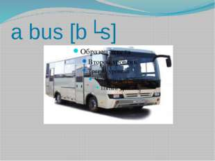 a bus [bʌs]