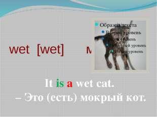 wet [wet] мокрый It is a wet cat. – Это (есть) мокрый кот.