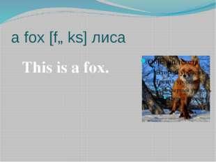 a fox [fɒks] лиса This is a fox.