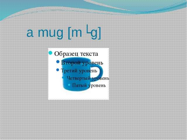 a mug [mʌg]