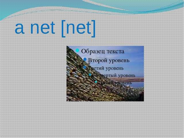 a net [net]