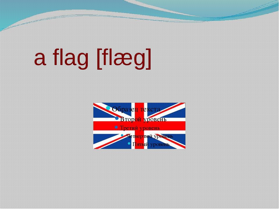 a flag [flæg]