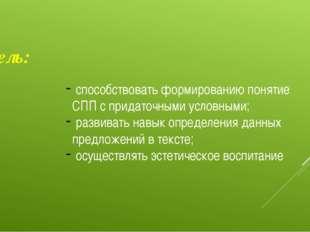 Цель: способствовать формированию понятие СПП с придаточными условными; разви