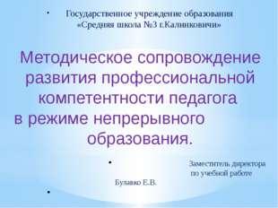 Государственное учреждение образования «Средняя школа №3 г.Калинковичи» Мето