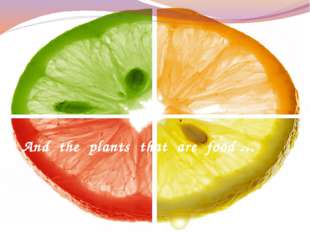 And the plants that are food …
