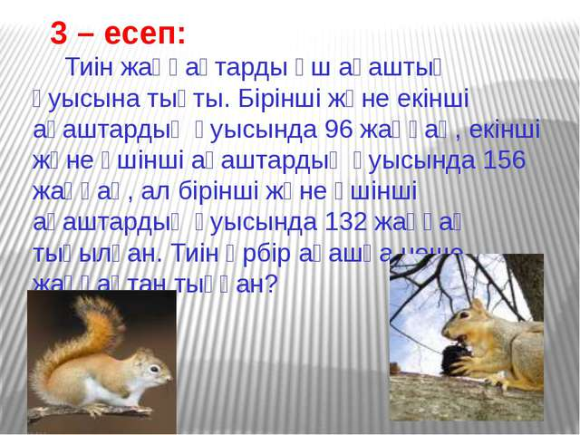 3 – есеп: Тиін жаңғақтарды үш ағаштың қуысына тықты. Бірінші және екінші аға...