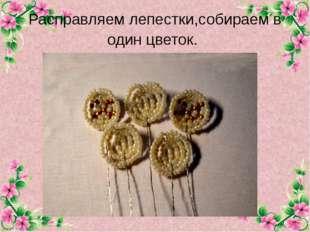 Расправляем лепестки,собираем в один цветок. FokinaLida.75@mail.ru