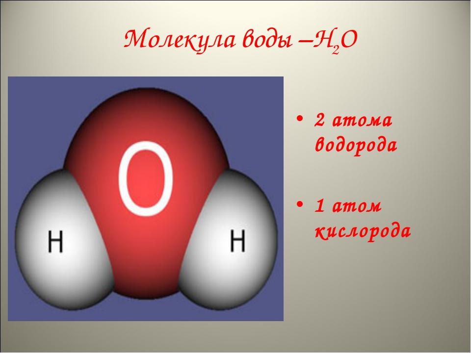 Молекула воды –Н2О 2 атома водорода 1 атом кислорода